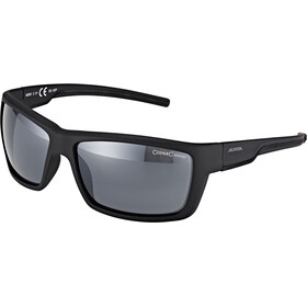 Alpina Slay Brille, black matt